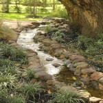 pondless stream 7