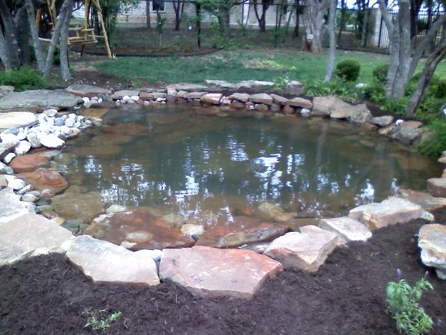 Portfolio the pond doctor for 1000 gallon fish pond