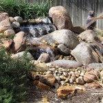 Split waterfalls pondless