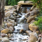 pondless austin texas