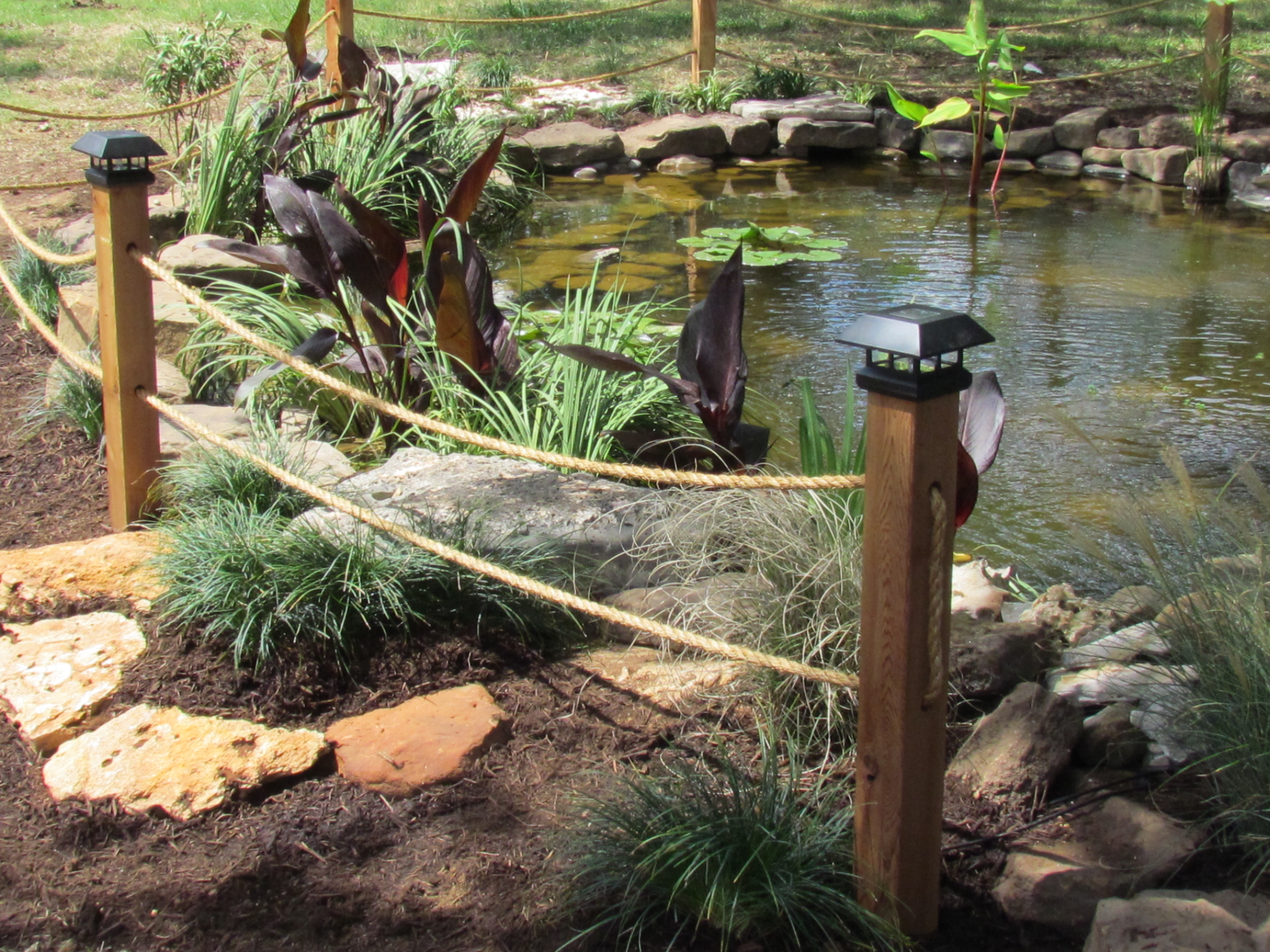Koi Pond Amp Pondless Waterfall Prices For Central Texas By