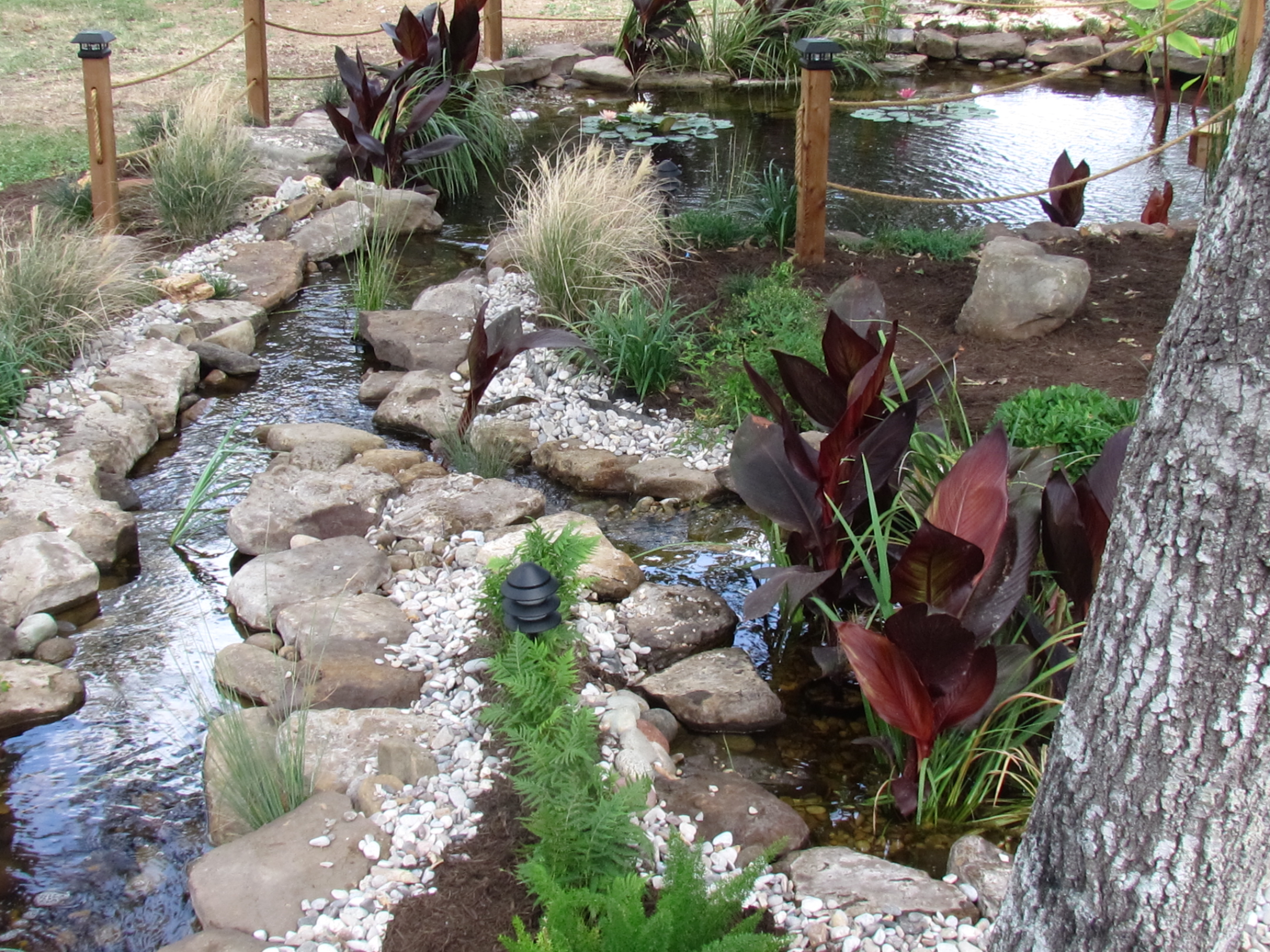 Pondless Amp Pond Pricing The Pond Doctor