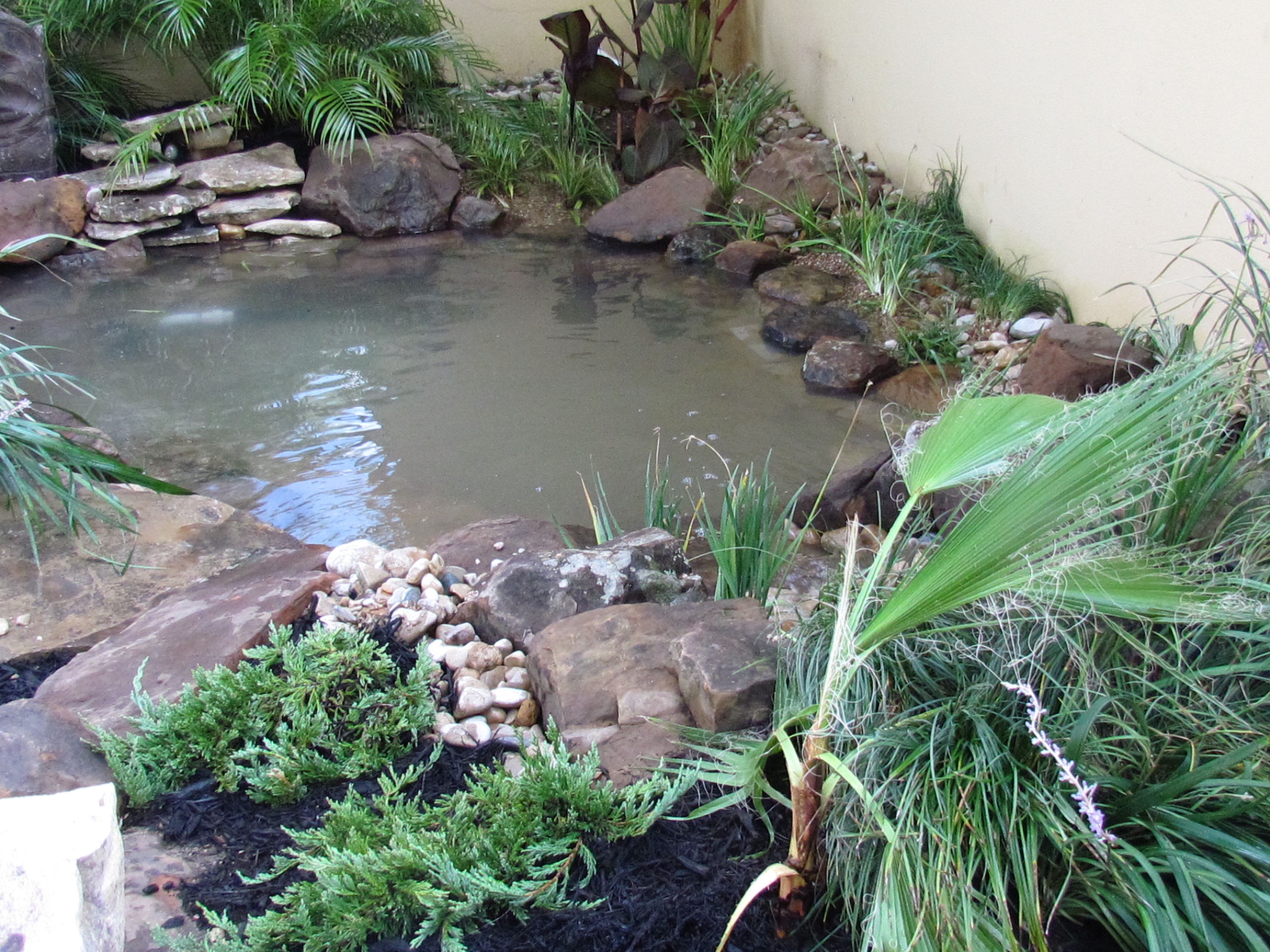 1000 images about pond by front door ideas on pinterest for Pond edging ideas