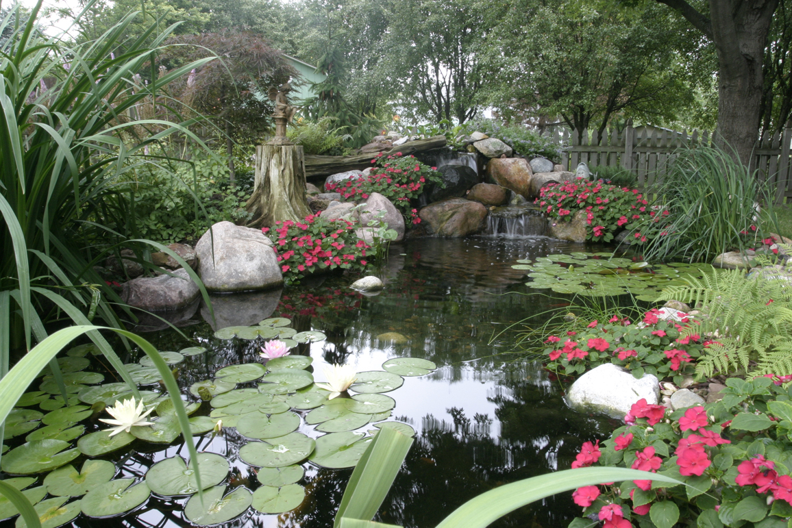 Ponds and pondless water features for sale the pond doctor for Water garden landscaping