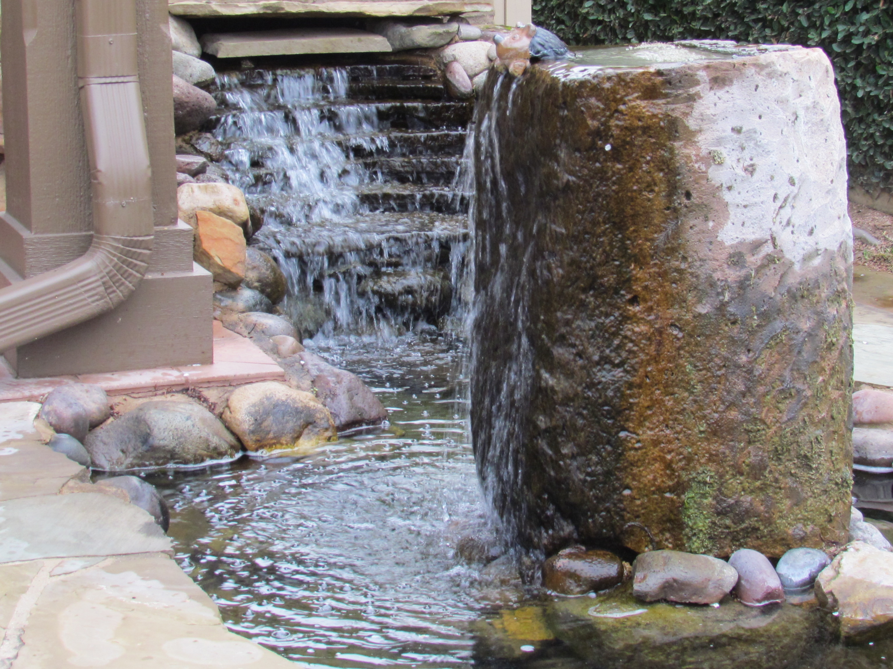 Pond Cleaning Who Has The Best Price For Pond Cleaning