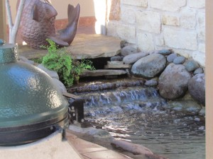 pond cleaning austin texas
