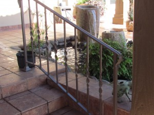 IMG_672pond cleaning austin texas9